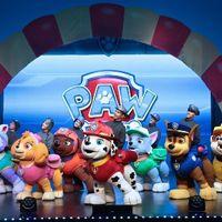 Paw Patrol: Carrera al rescate