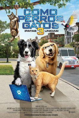 Como perros y gatos 3: patas unidas!