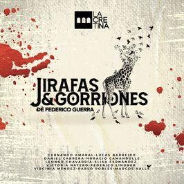 Jirafas & Gorriones